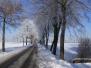Winter in Esdonk